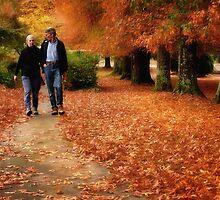 Colour my Autumn by Graham Jones