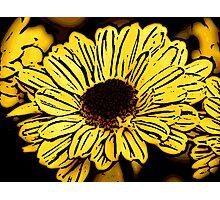 Sun Worshiper - Woodcut Photographic Print