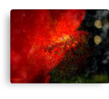 The Fire From Within  Canvas Print
