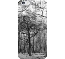 Woods iPhone Case/Skin