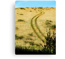 Backtracking Canvas Print