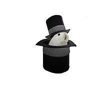 Bunny in a hat in a hat by Sid3walk Art