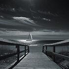 Moonlight Sail by Wendy Mogul