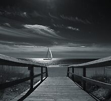 Moonlight Sail by Wendy Mogul