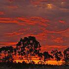 THE SKY BURNS by SHAZZ