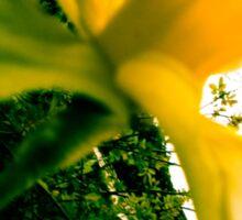 Nature - Plant 02 Sticker