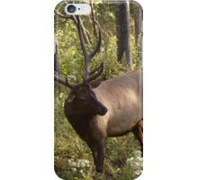 Do you have any idea how much these things weigh? iPhone Case/Skin