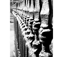 Iron Fence Photographic Print