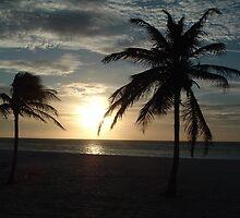 Island Sunset by Nic Antoinette
