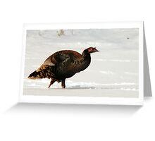 Wild Turkey in Snow Greeting Card