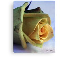 Beautiful Imperfection Canvas Print