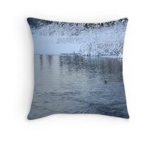Last swim of the year Throw Pillow