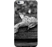 The Fabled Silver Lining iPhone Case/Skin