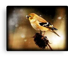 American Goldfinch Watercolor Canvas Print