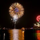 Sydney Australia 2008 New Years Eve Fireworks by DavidIori
