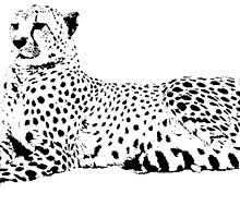 Cheetah by Wildman277