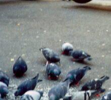 Parisian Pigeon Party, Spring 2000 Sticker