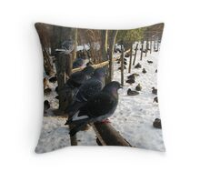 Pigeons Rulers of all they survey Throw Pillow