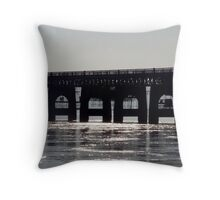Silvery Tay Throw Pillow