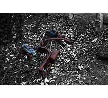 Left for Dead Photographic Print