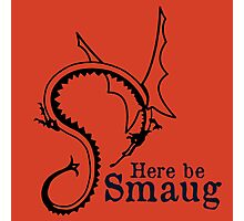 Here be Smaug - Black & Navy, for Orange T-Shirt Photographic Print