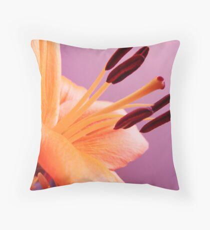 A Bit of a Stretch Throw Pillow