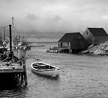 Peggy's Cove Harbour by Sandy  McClearn