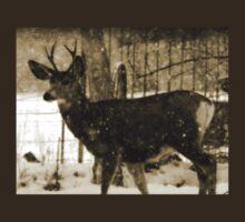 Fork-in-Horn Mule Deer Buck by Ryan Houston