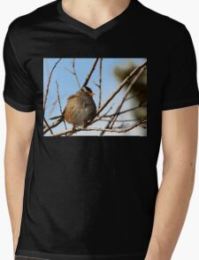 White Crowned Sparrow Winter 2 T-Shirt