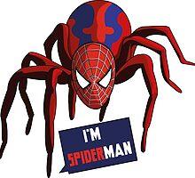 Spiderman by MulloIV