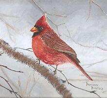 Cardinal by Damian Deutsch