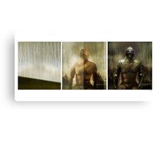 Armour maketh the man Canvas Print
