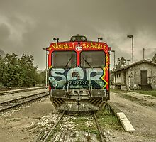 Croatian Rail Graffiti  by Rob Hawkins