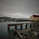 Shelly Bay by Linda Cutche