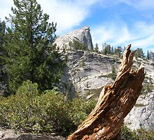 Half Dome In The Distance by Jeremy Muratore