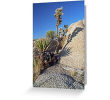 Sharp Shadows Greeting Card