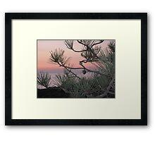 pastels & pines Framed Print