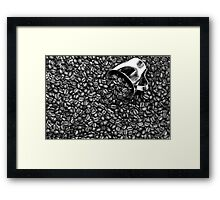Coffee beans in black and white Framed Print