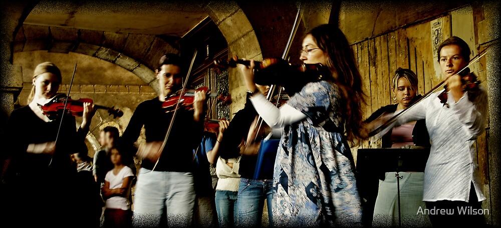 Violin Fury by Andrew Wilson