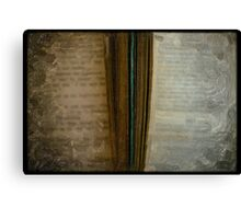 2 Books painted Canvas Print