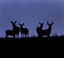 Group Sillouette by Angela E.L. Clements