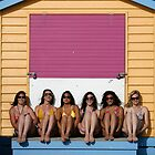 Beauty and the Bathing Box by John Robb