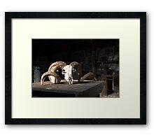 Shear Reality Framed Print