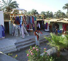 Selling thier wares between Luxor & Aswan by jeanemm