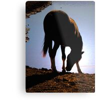 Bottom's Up Metal Print
