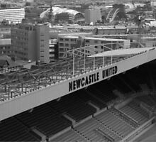 Newcastle  by David White