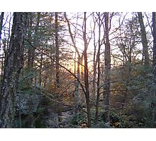 Sunset thru the trees Photographic Print