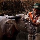 Splash by Harjono Djoyobisono