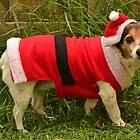 Santas helper by Jemma Richards