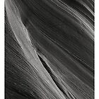 Sandstone Waves in Grayscale by Brandt Campbell